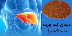 مهمترین خواص خاکشیر برای کبد و درمان کبدچرب چیست